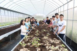 生態農場農作體驗活動