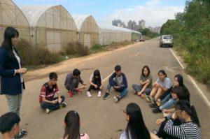 小組討論與規劃